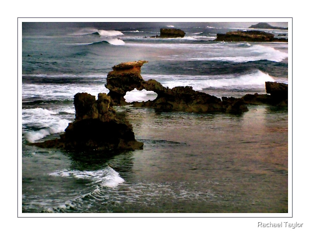 Early Morning Ocean by Rachael Taylor