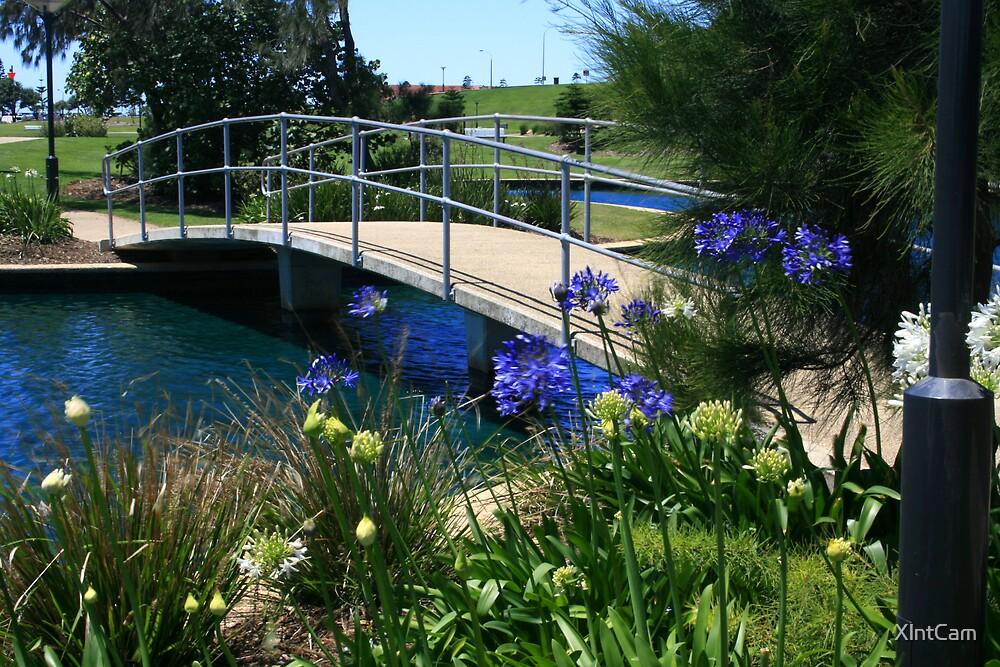 Bridge over shallow waters by XlntCam