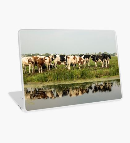 Cows and their reflective image Laptop Skin