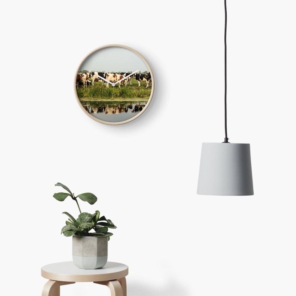 Cows and their reflective image Clock