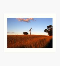 Sunburnt Australia Art Print