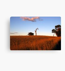 Sunburnt Australia Canvas Print