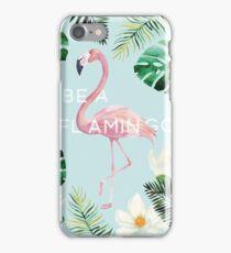 Be A Flamingo iPhone Case/Skin