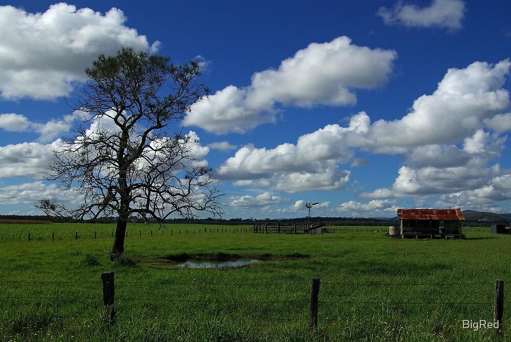 Farmhouse by BigRed