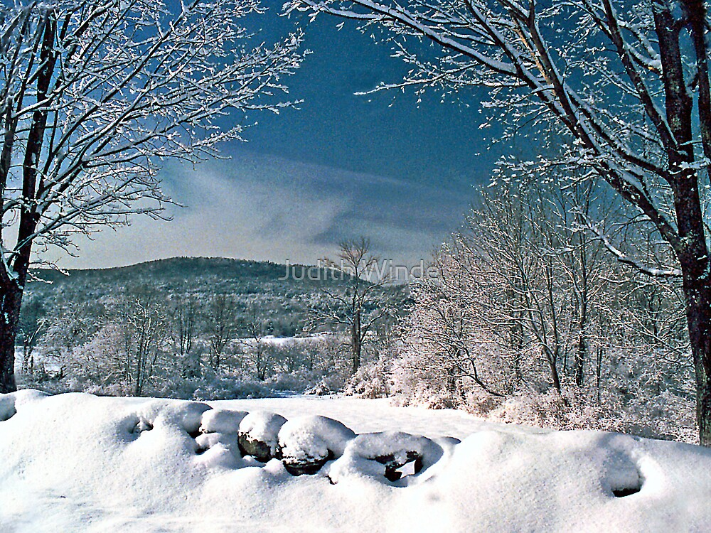 Winter Wonderland by Judith Winde