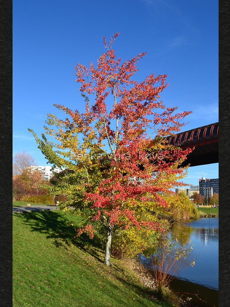 Tricolored tree by Trin4ever