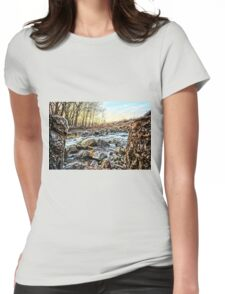 Between A Rock Womens Fitted T-Shirt