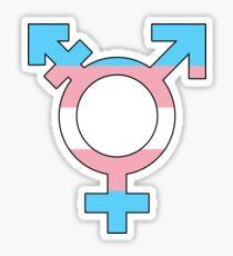 Transgender-Stolz Sticker