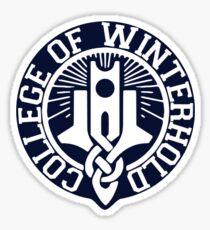 College of Winterhold Logo Design Sticker
