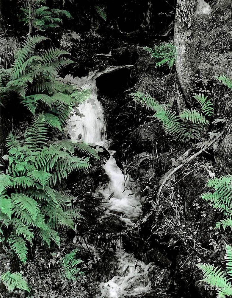 Woodland Waterfall by Ribbon