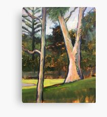 Trees, Basterfield Park Canvas Print