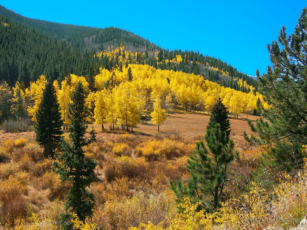 Golden Hills by Michael Reimann