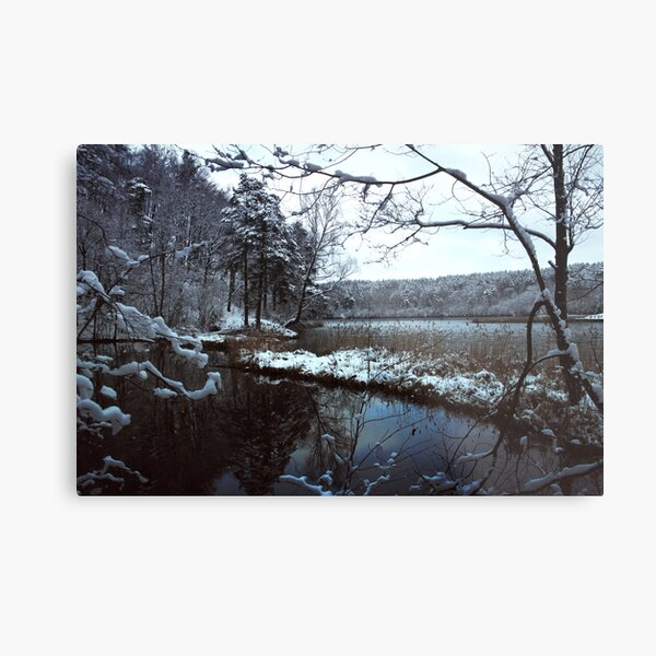 The first snow in the Green Lake Metal Print