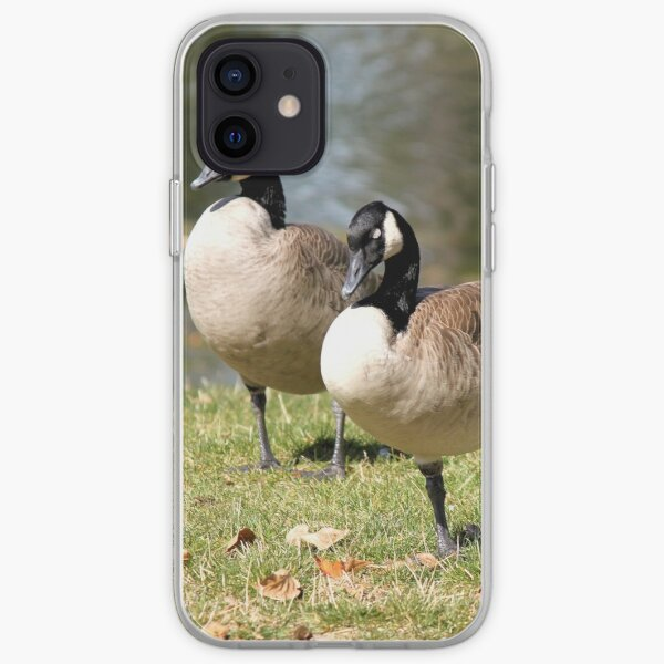 Canada Geese iPhone Soft Case