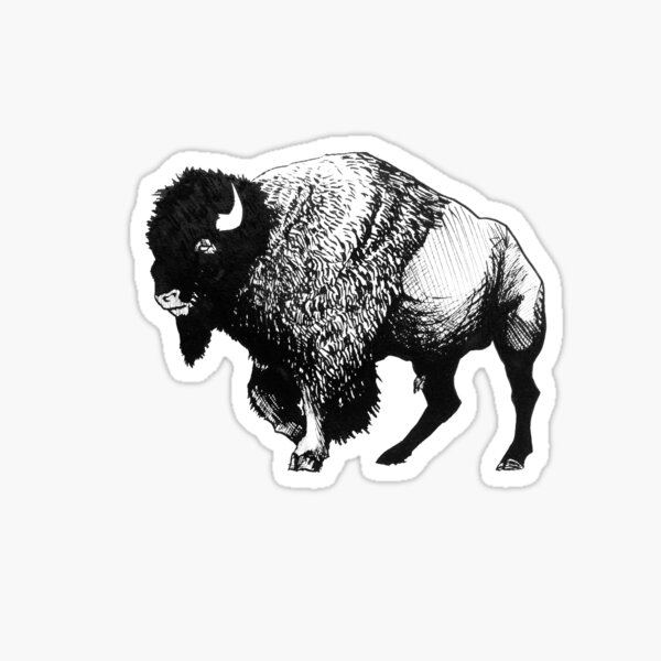 Buffalo Ink Bison Drawing Sticker