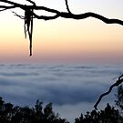 Framed Fog - Mount Barker Summit by Leeo
