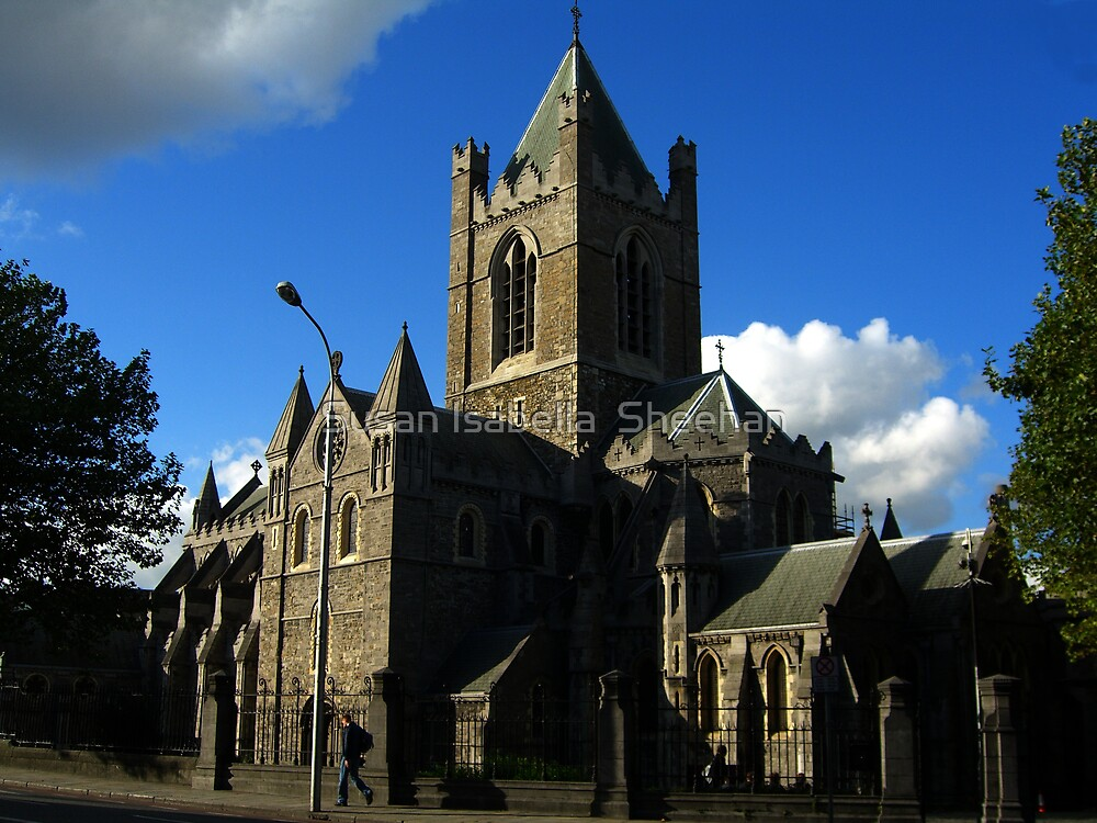 Christ Church - Dublin by Susan Isabella  Sheehan