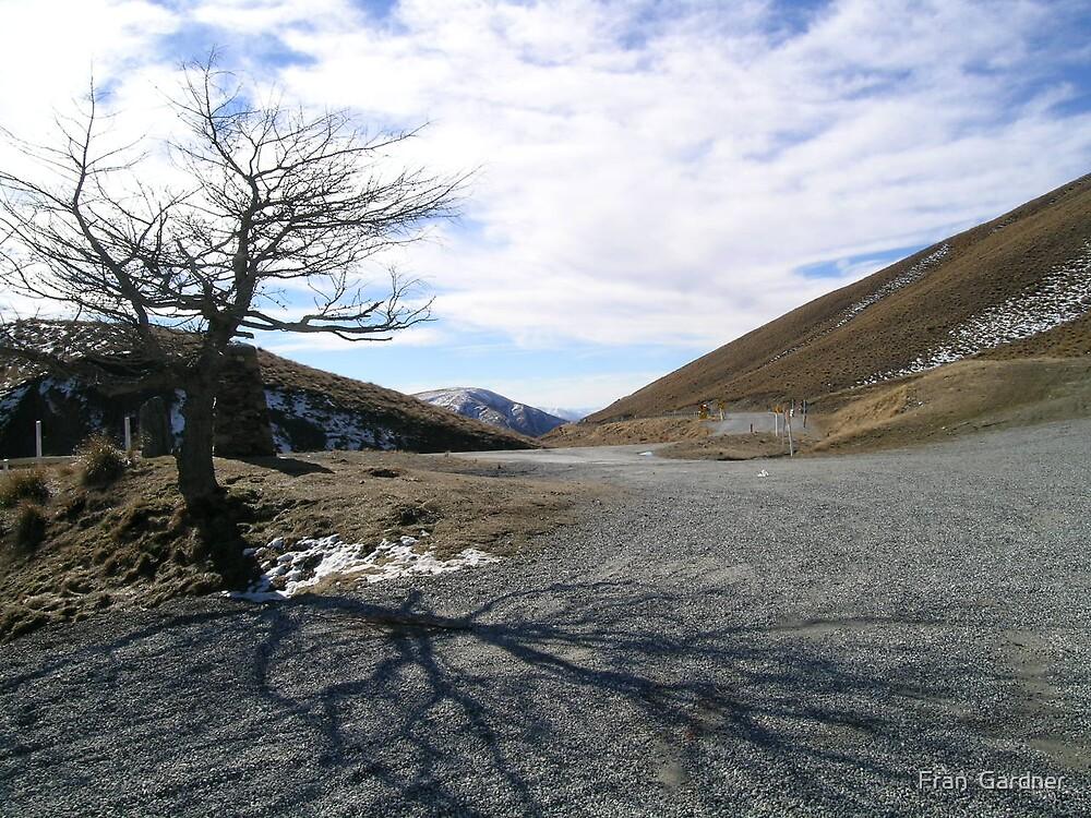 Cardrona Pass by Fran  Gardner
