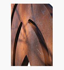 Tin Man Photographic Print