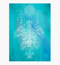 Turtle Illustration Art White Blue Ocean Print Photographic Print