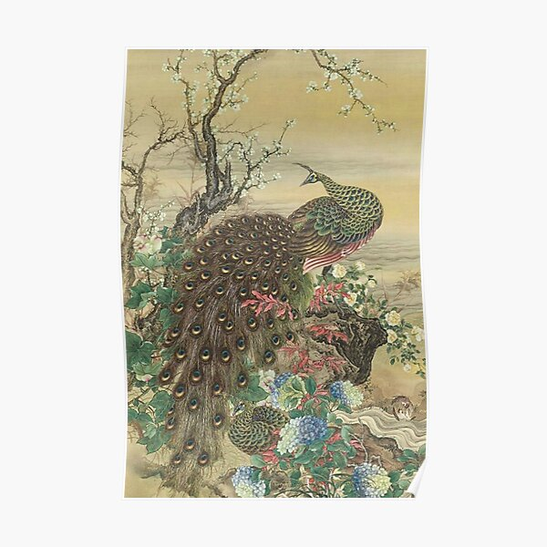 Lady Peacock Chinoiserie Poster