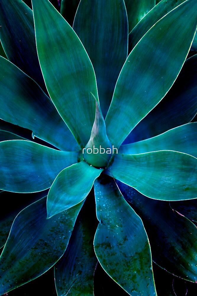 Yukka 4 by robbah