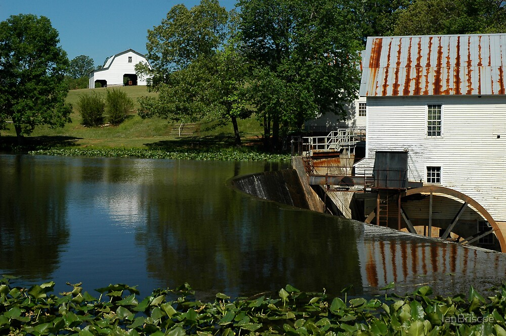 Mill pond by IanBriscoe