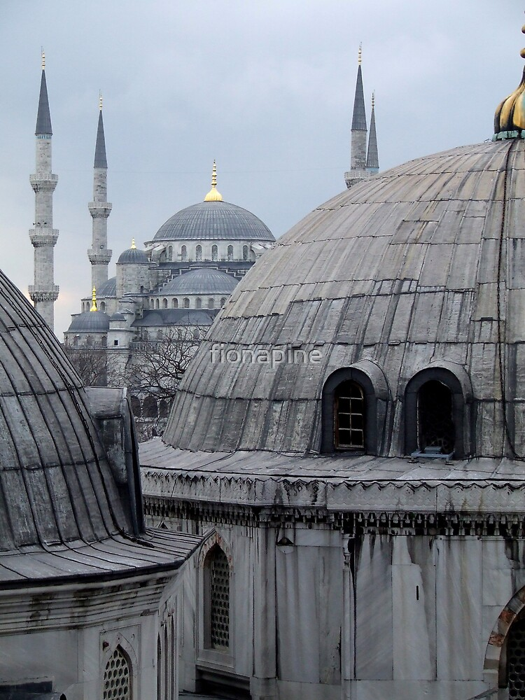 Blue Mosque from Aya Sofia - Istanbul by fionapine