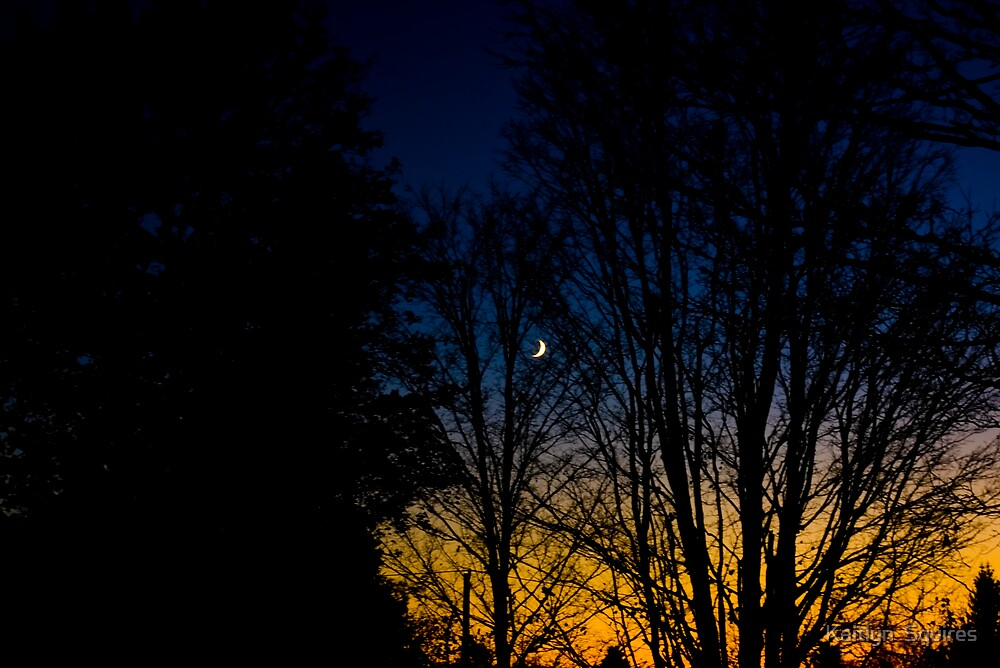 moonlit sunset by Kaitlyn  Squires