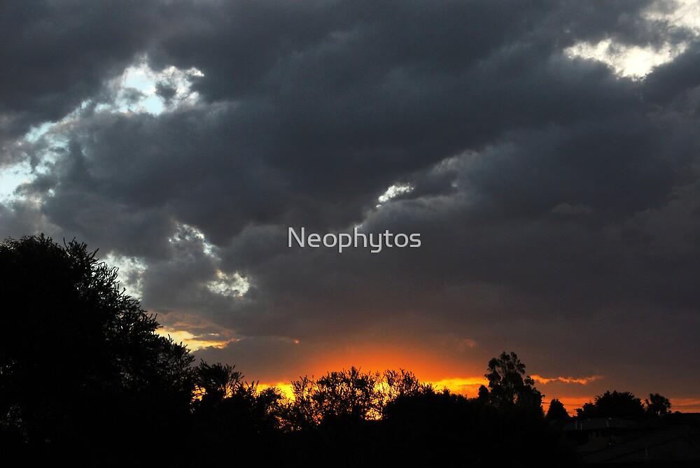Winter's Night 2 by Neophytos