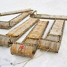 Sleds by Robyn Carter