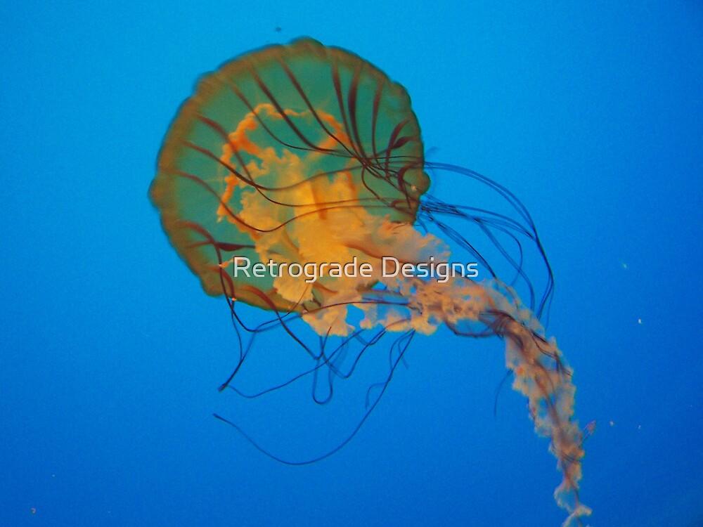 Jelly Fish by Retrograde Designs