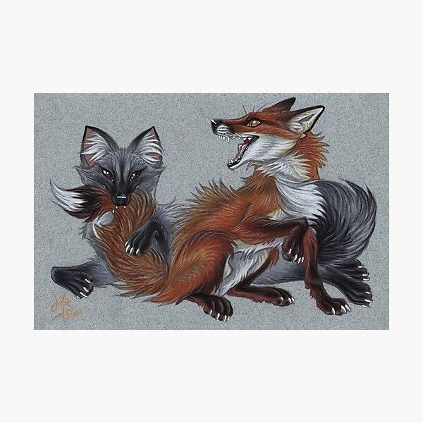 Foxies Photographic Print