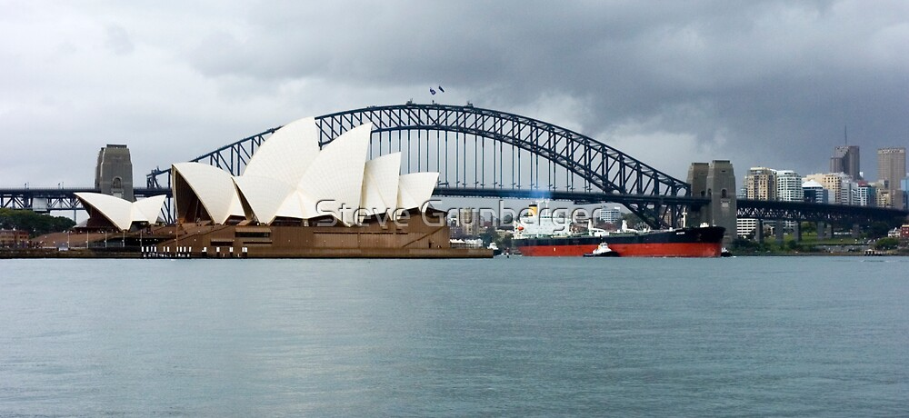 Cargo Ship - Sydney Harbour by Steve Grunberger
