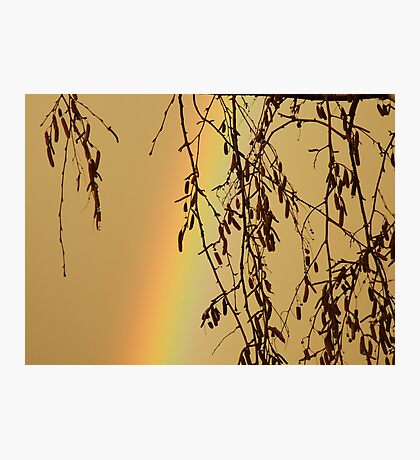 Muggy Rainbow Sky Photographic Print