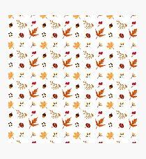Autumn Elements Pattern Photographic Print
