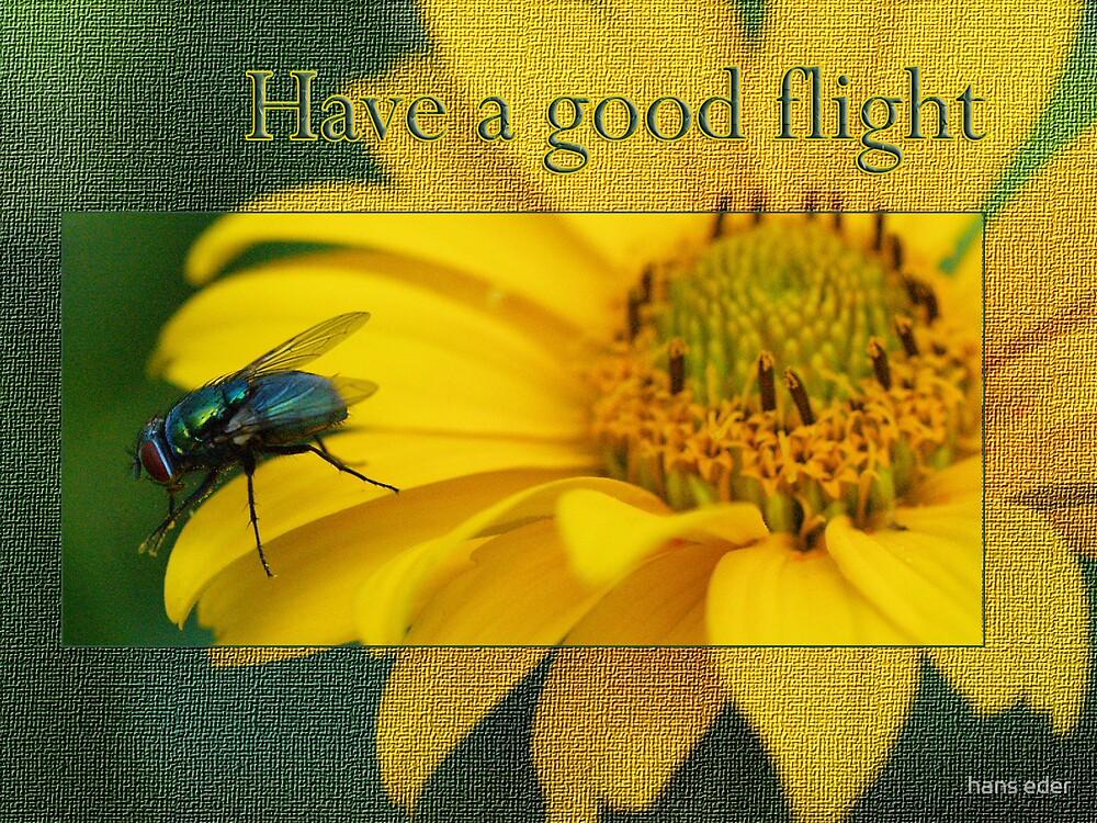 have a good flight by hans eder