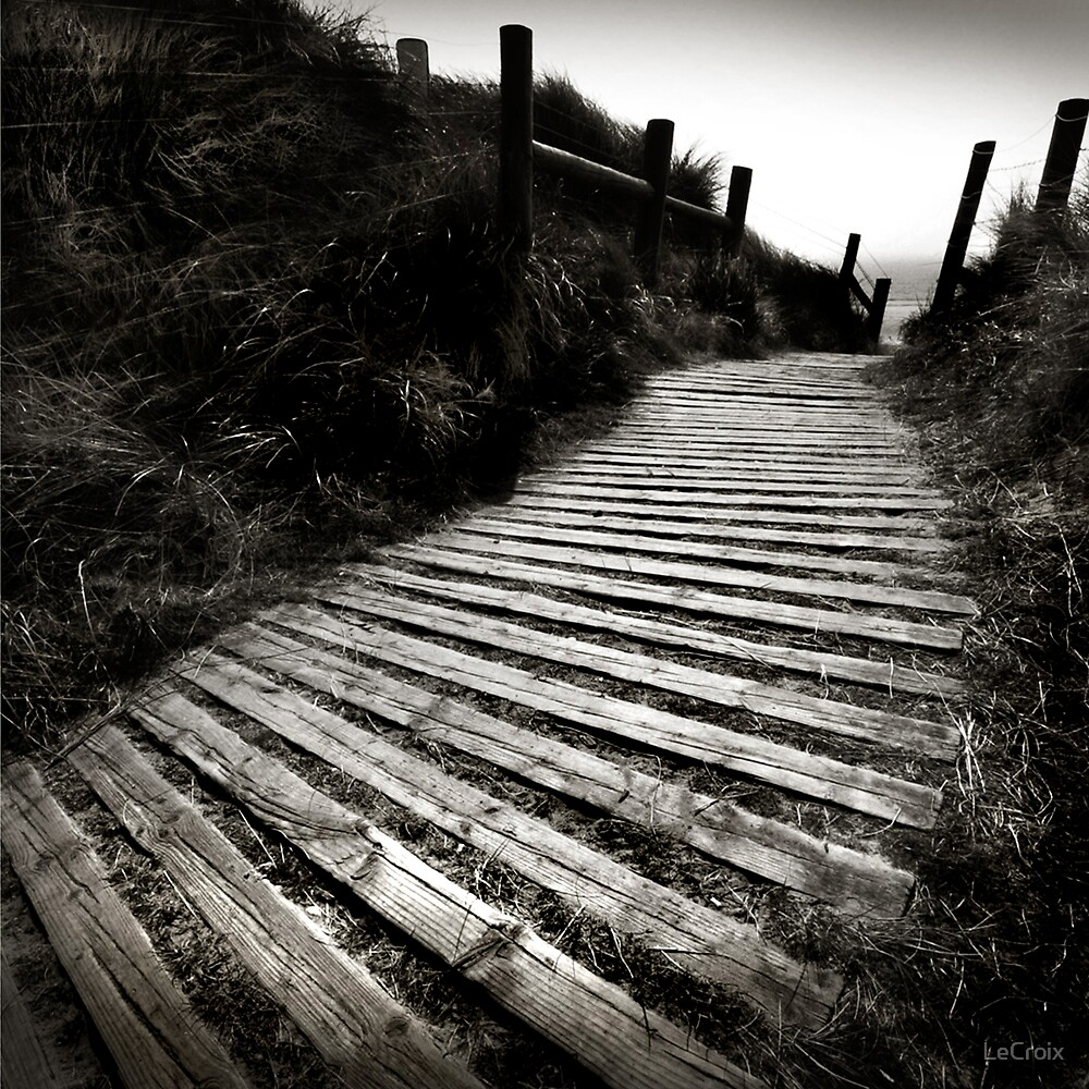 Pathway to the Sea... by LeCroix