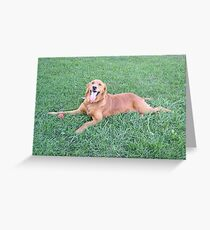 Engagement Puppy Greeting Card