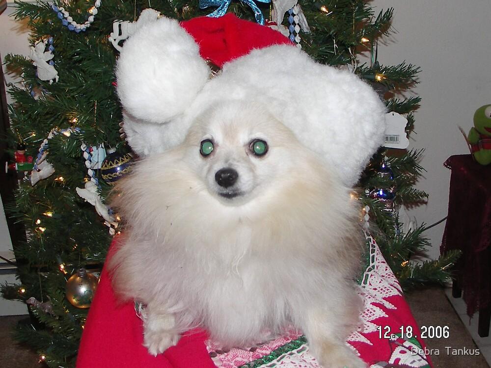Kimmy's Christmas by Debra  Tankus