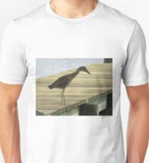 Yellow Crowned Night Heron - Juvenile   (1407111638VA) T-Shirt