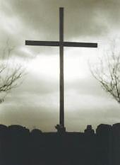Trust In God by Alishia Stillwell