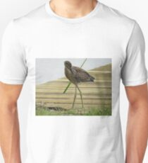 Yellow Crowned Night Heron - Juvenile  (1407111652VA) T-Shirt