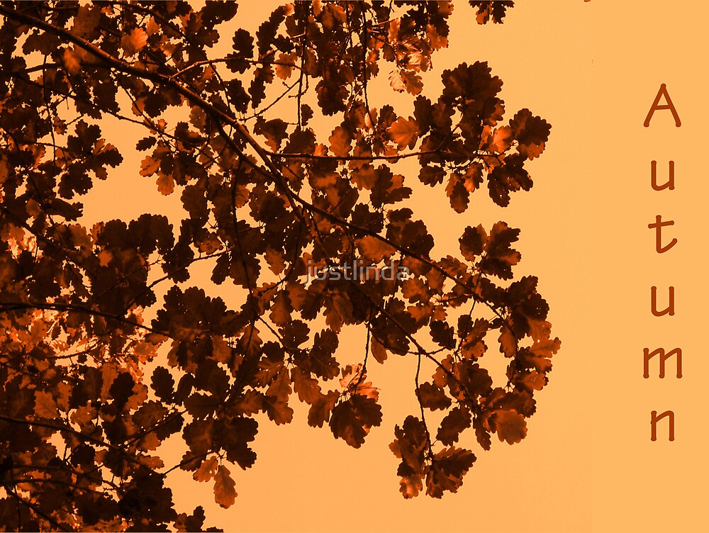 Autumn by justlinda