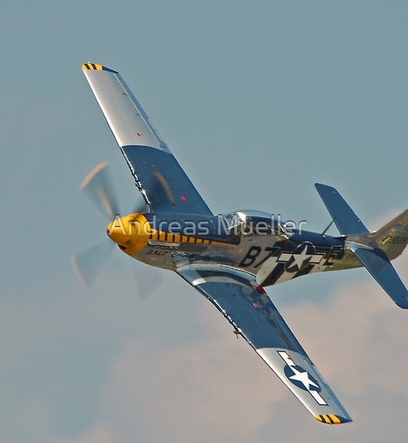P-51D Mustang  by Andreas Mueller
