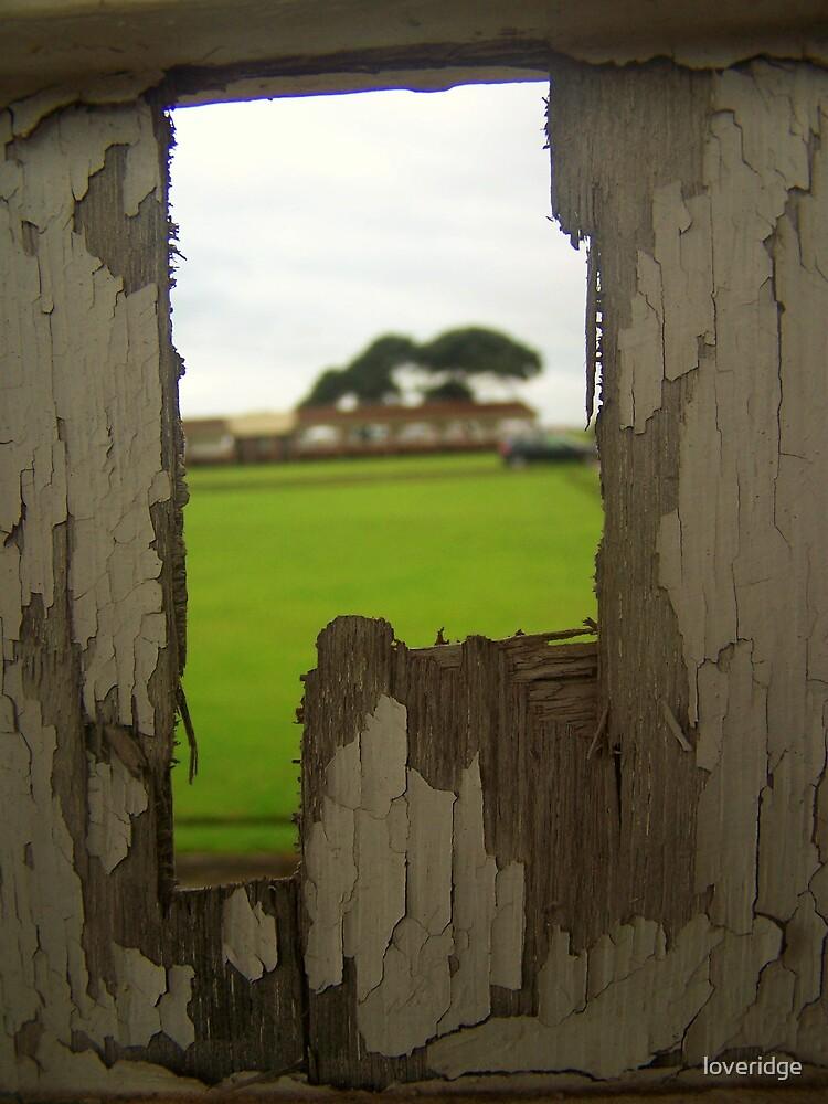 The secret garden by loveridge