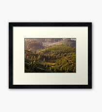 Tea plantation, Devikolam, Munnar Framed Print