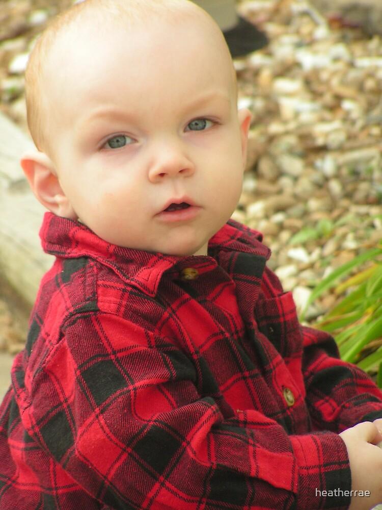 Handsome Boy by heatherrae