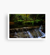 Donnelly's Weir Canvas Print