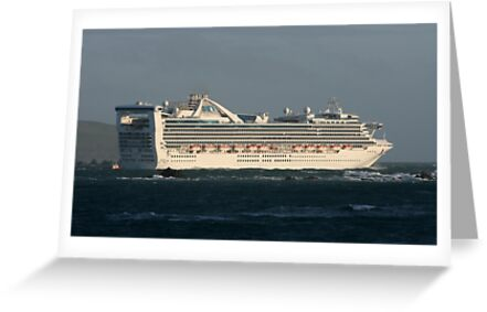 Star Princess by Mike Warman